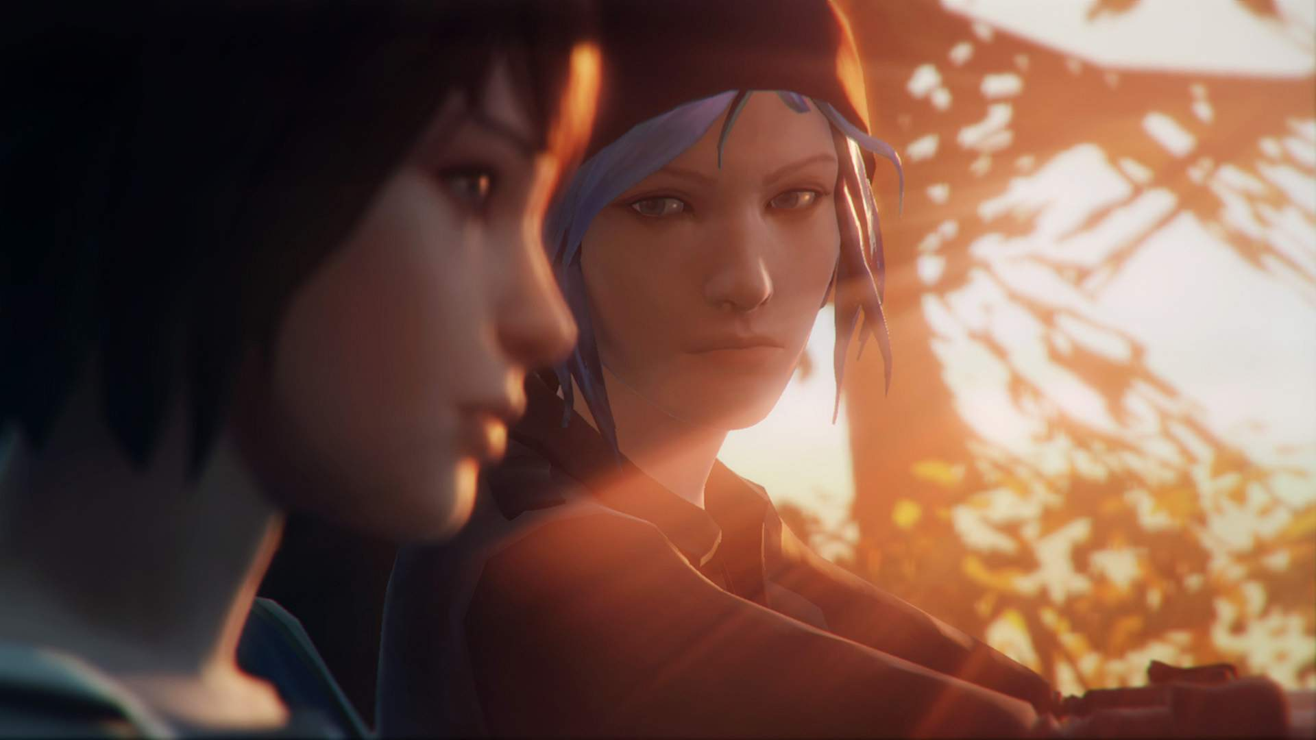 A close-up of Max and Chloe in Chloe's truck, as they drive, lit by golden sunlight. Chloe has an accusatory look.